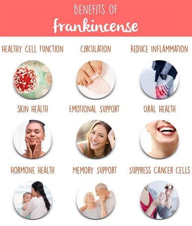 13 benefits of frankincense oil